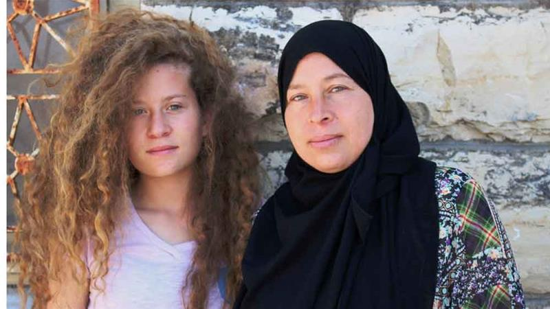 ahed photo